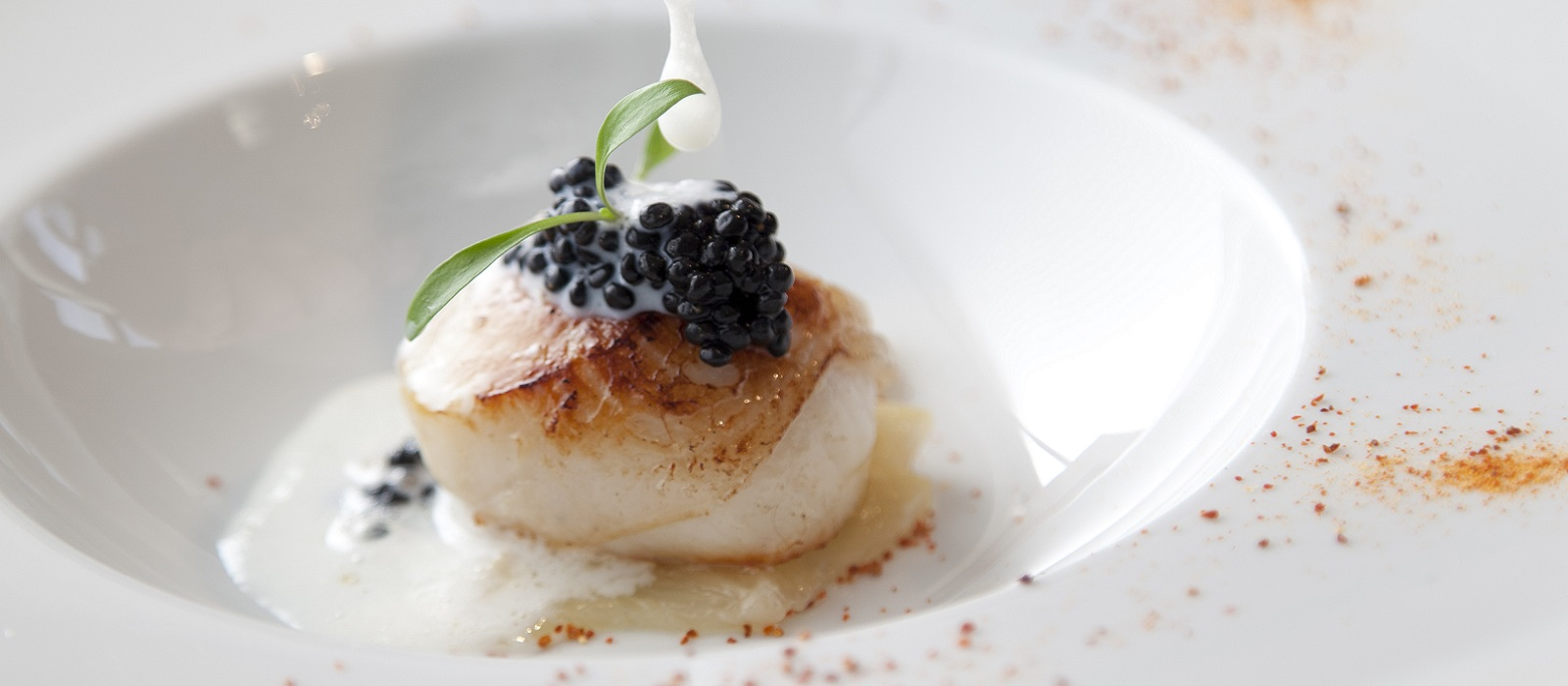 Scallop and Hazelnut Recipe from Dunbrody House