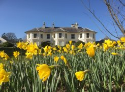 Plan your Easter Break with Ireland's Blue Book